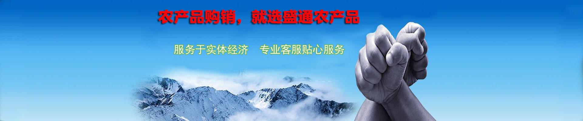 陕西九龙农产品
