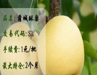 蒲城酥梨(SL)